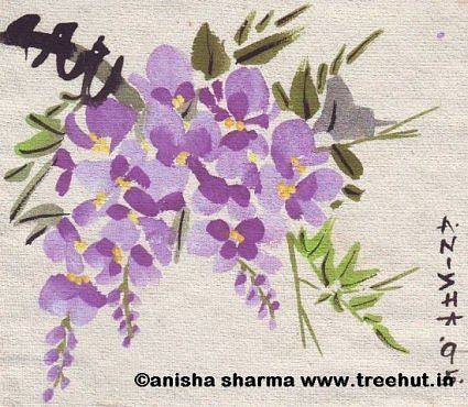 Wisteria in water colours by Anisha Sharma