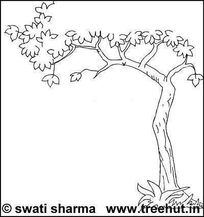 evergreen tree printable adult coloring pages
