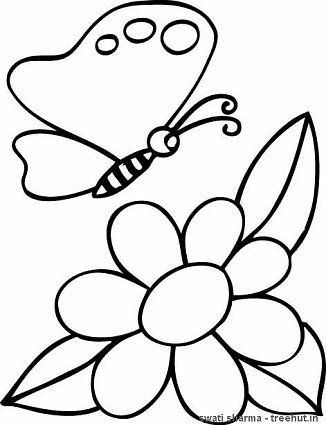 butterfly on flower coloring page