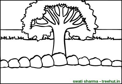 lone olive tree in field coloring page