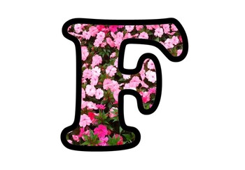 Pink Flowers, Bulletin Board Letters, Numbers and Symbols, Spring Alphabet Decor