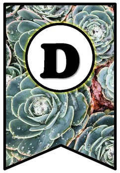 Succulents, Plants, Pennant Banner Bulletin Board Letters, Spring Alphabet Decor