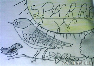 Child Art, A Sparrow