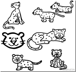 Leopard Drawing and Coloring Pages